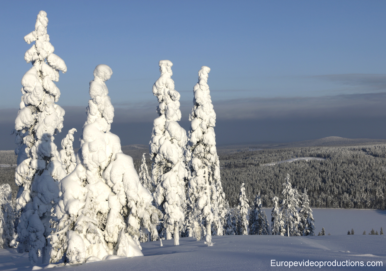 Winter landscape from Pello in Finnish Lapland