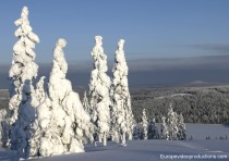 Winter in Pello in Lappland