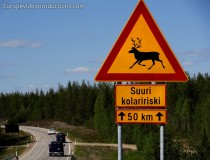 Reindeer Warning: reindeer crossing road sign in Lapland in Northern Finland