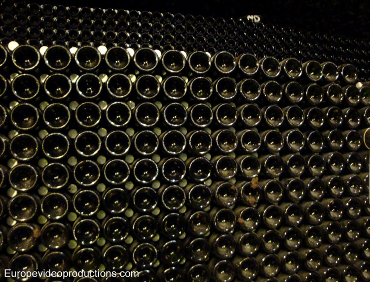 Champagne bottles in the cellar of a private Champagne producer in France