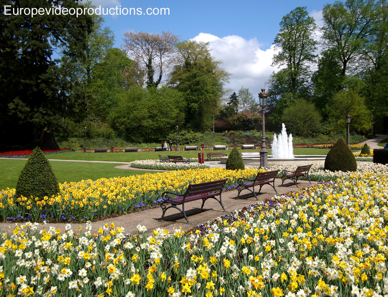Flowers in spring in a park in Luxembourg City