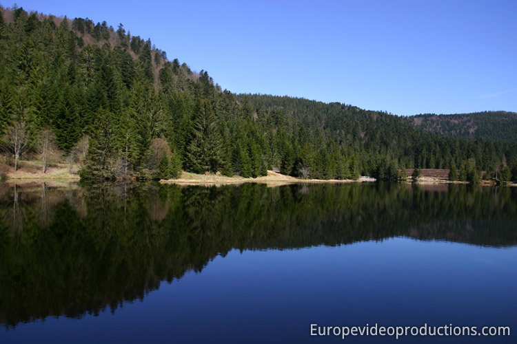 A Lake in Vosges Mountains in France