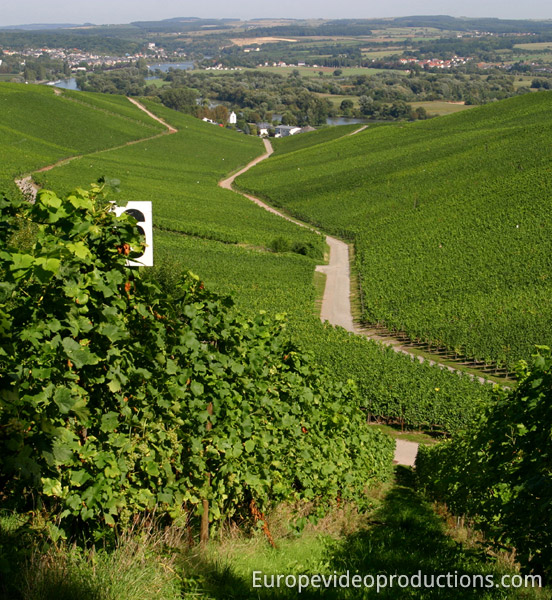 Moselle Valley in Grand Duchy of Luxembourg