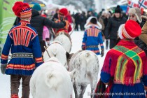 Reindeer caravan at Jokkmokk Winter Market in Lapland in Sweden